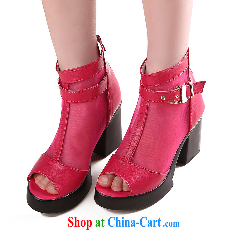 Lisa Donald Rumsfeld's autumn 2014 new women's shoes, high boots in bold high-heel click Web shoes women shoes marriage, shoes 7890 F of red 40 code 8cm high